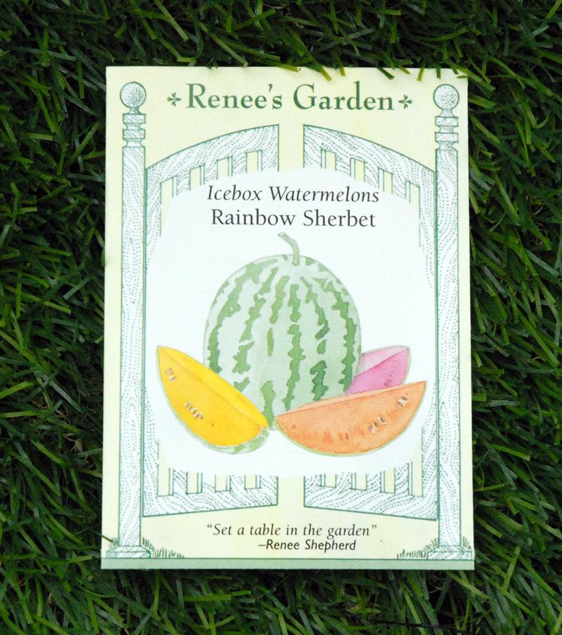 watermelon-rainbow-sherbet-seeds-edmonton-stalbert