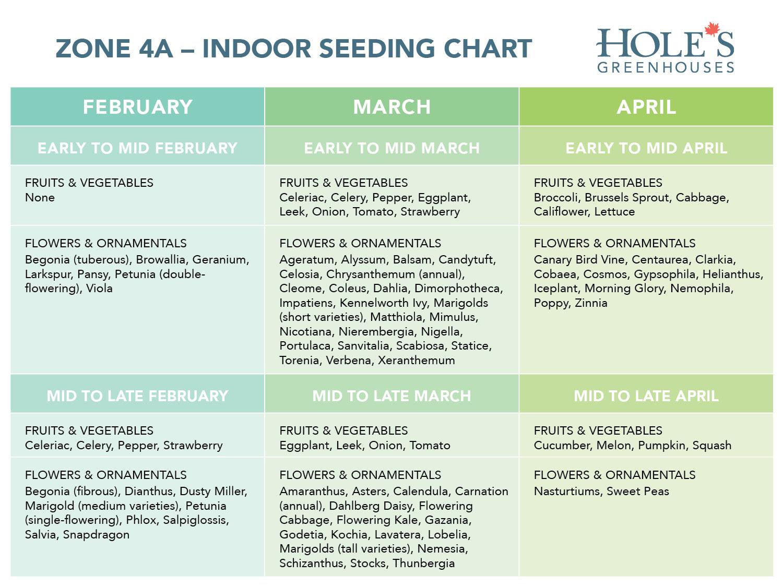 Edmonton-Zone-4A-Holes-Indoor-Seeding-Chart-2018.jpg