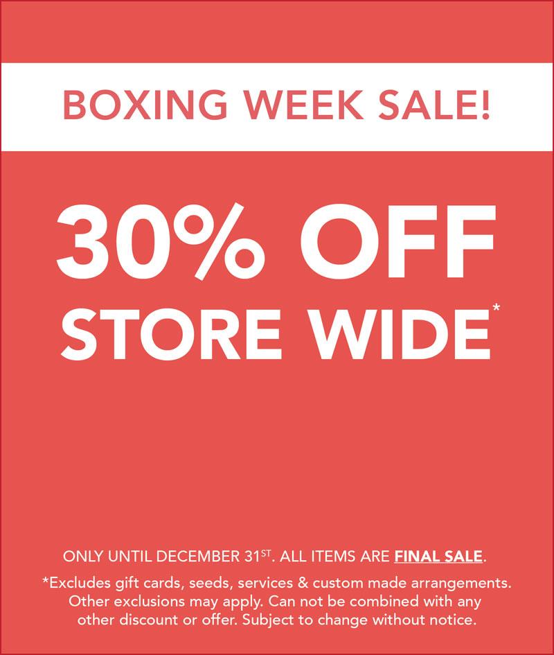 2018 Hole's Boxing Week Sale.jpg