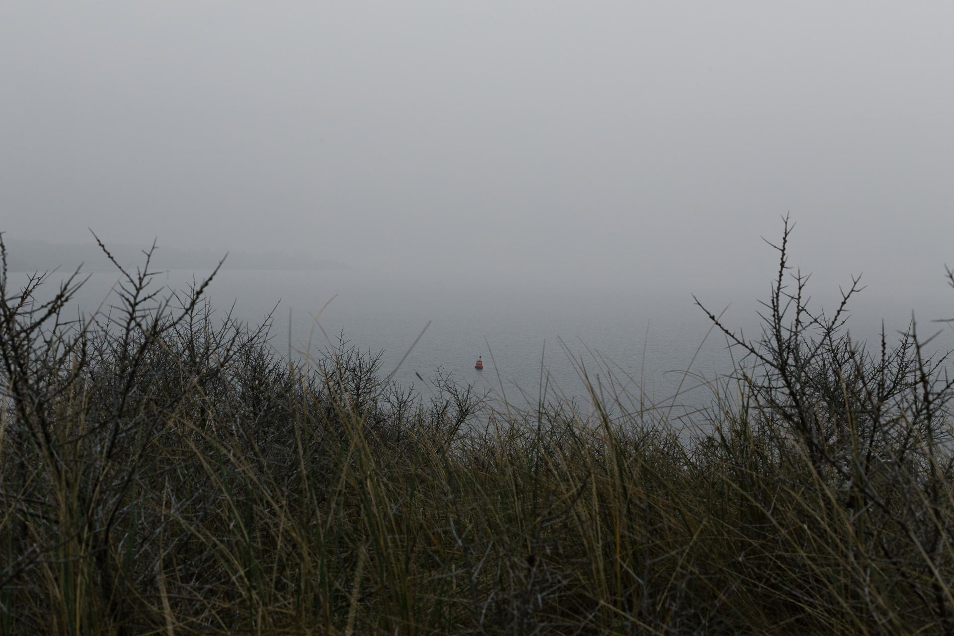 WijZeeland-20.jpg