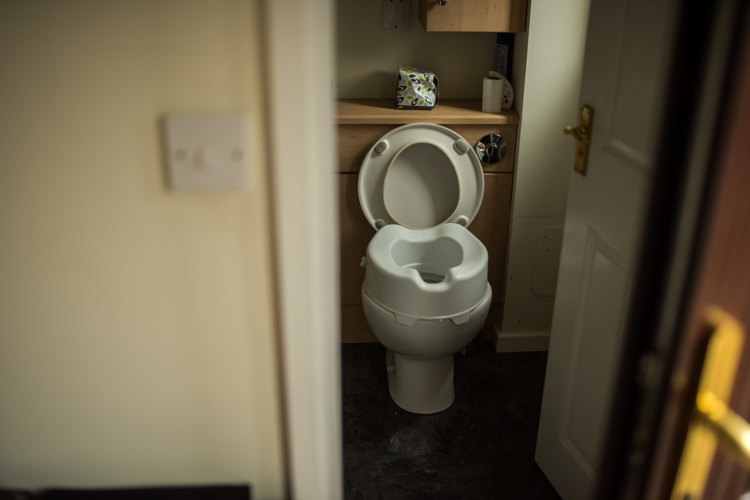 A special toilet seat