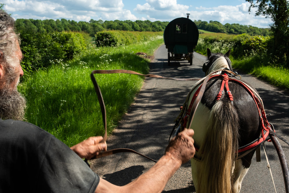 After retiring Smith they waited a day or two and then went with Rachael using her horses pulling the wagon and Pete with Ace. 2019.