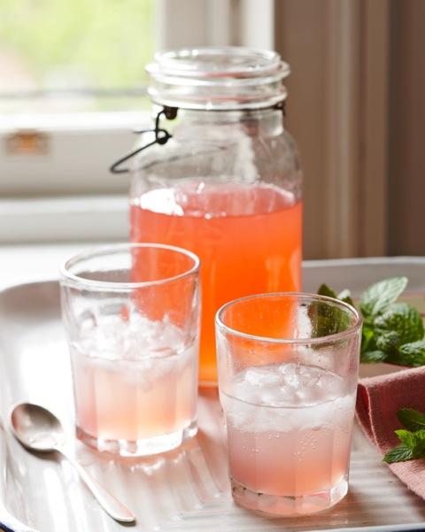 rhubarb_drink_dana_gallagher_002.jpeg