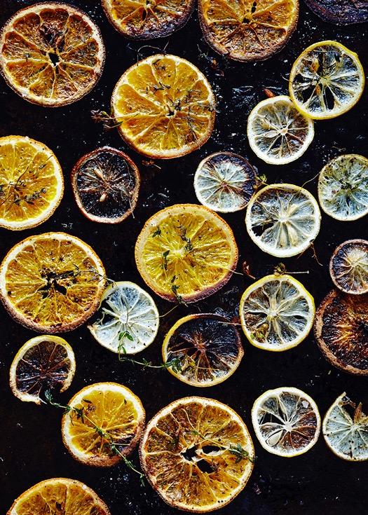 citrus_chips_dana_gallagher_0008.jpeg