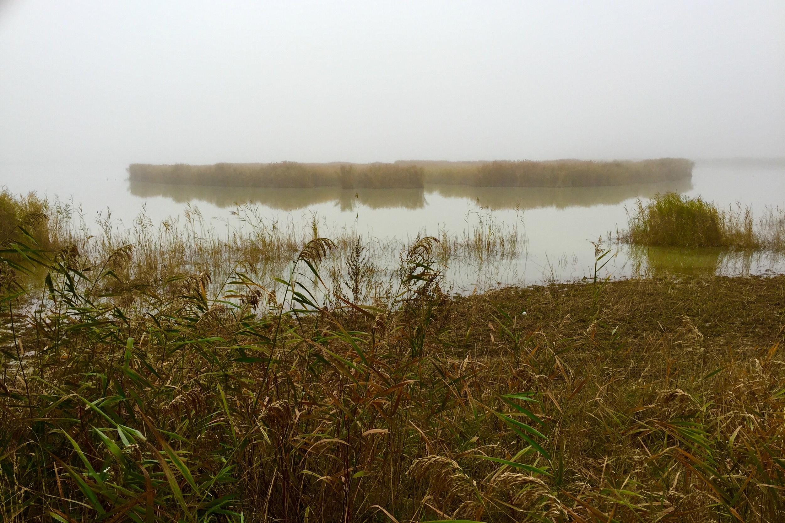 Darscho im Nebel