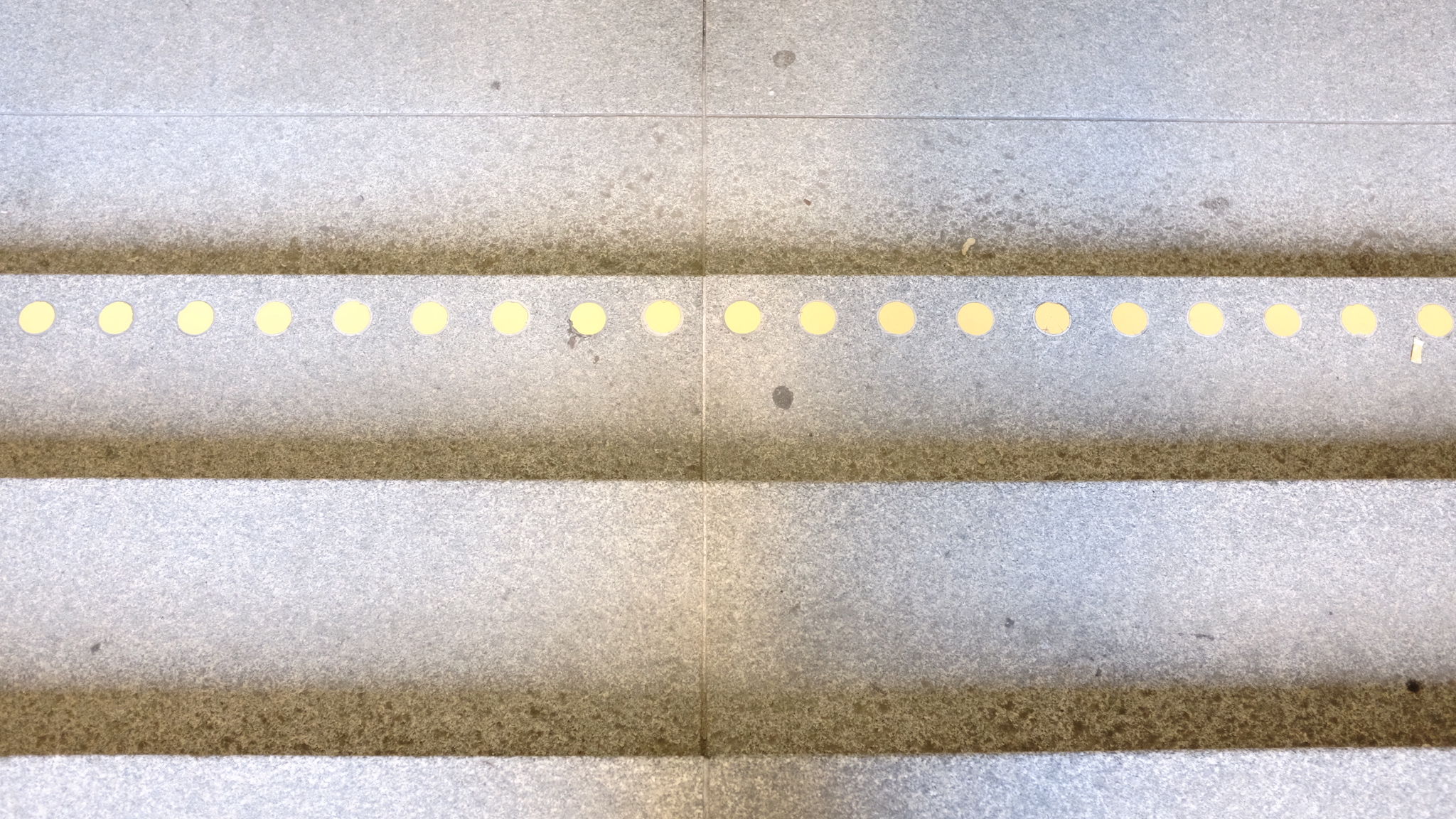 Dots and Stripes, Wien 2019