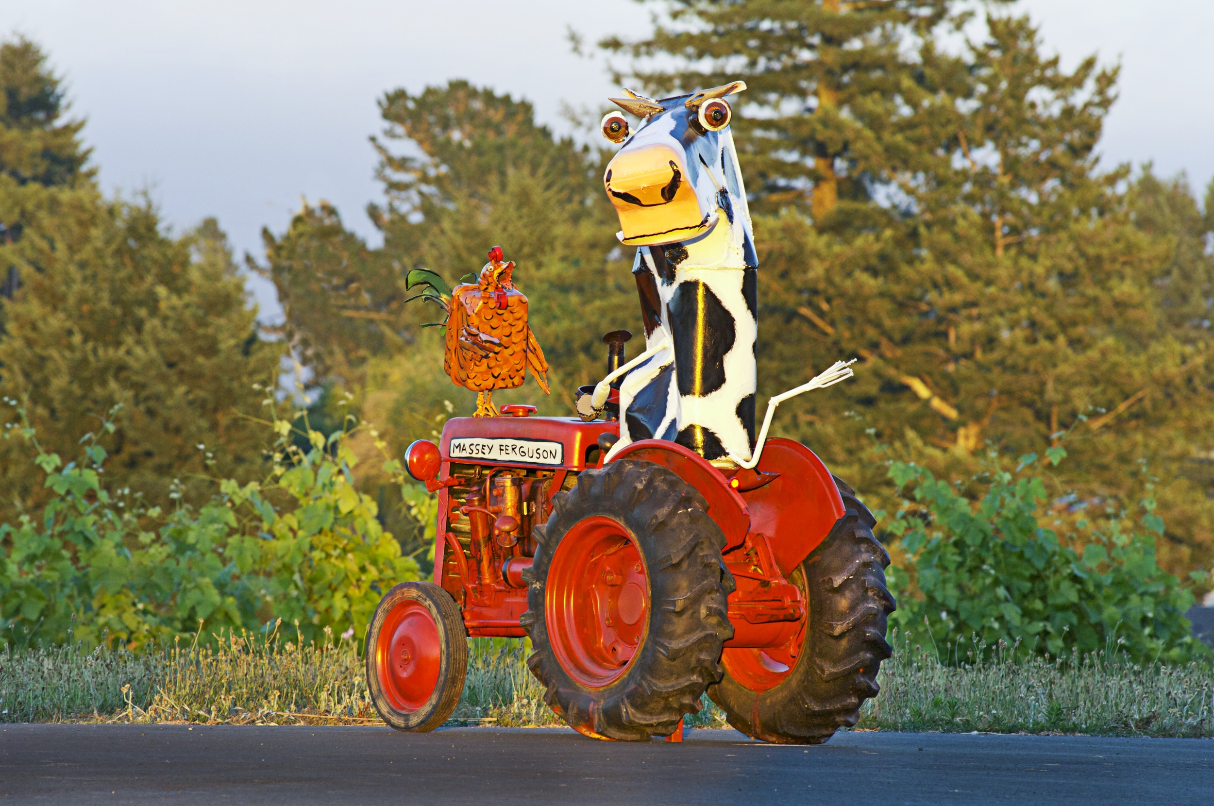 Cow-Chicken-Tractor-jpg.jpg