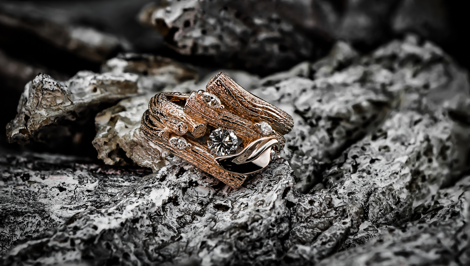 duffs bark ring-1-2.JPG