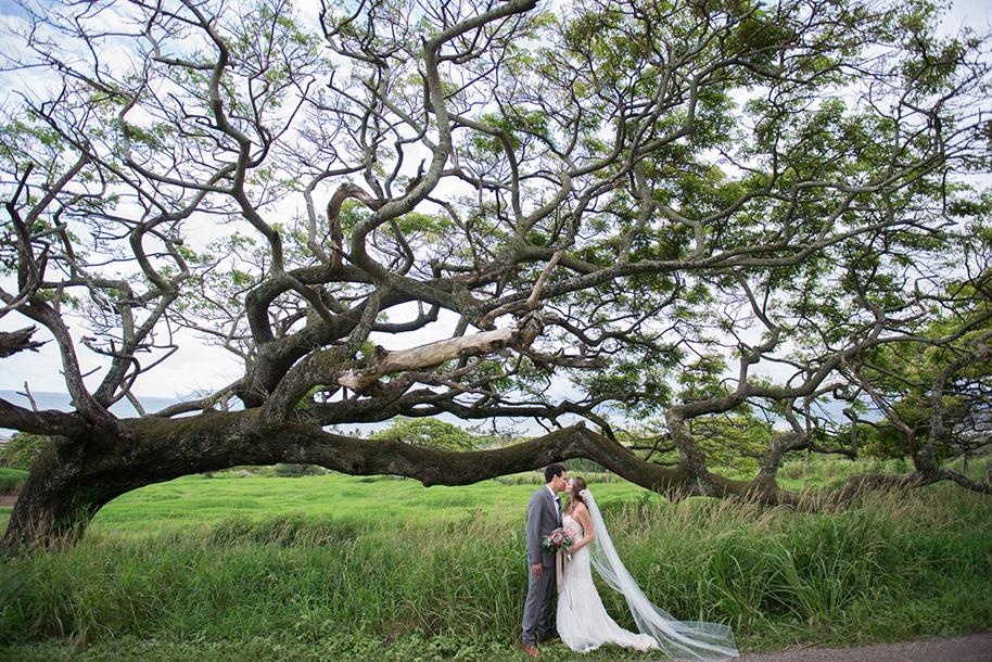 Kualoa-Ranch-Wedding-14.jpg