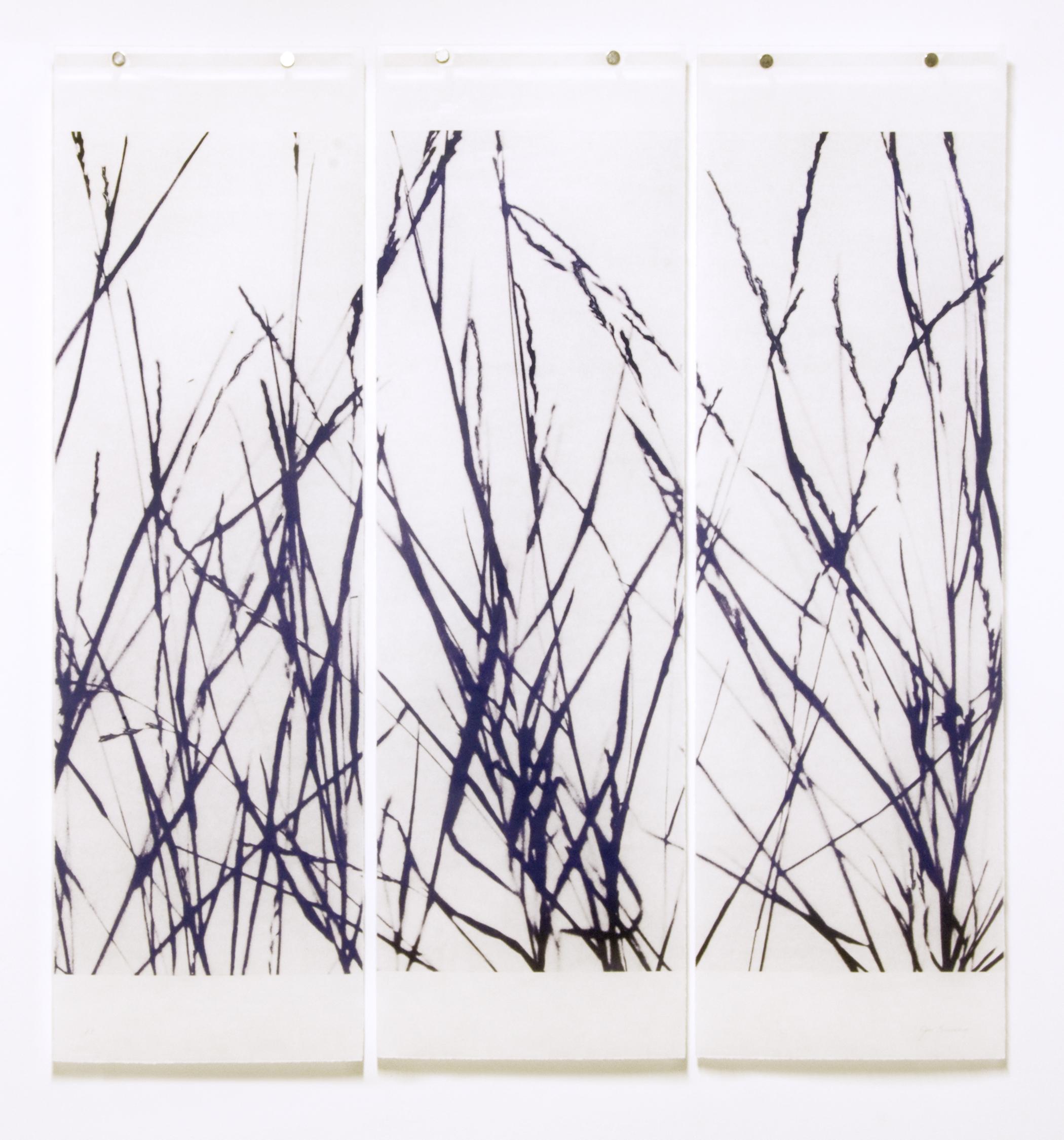 Tall Grasses (Reversed)