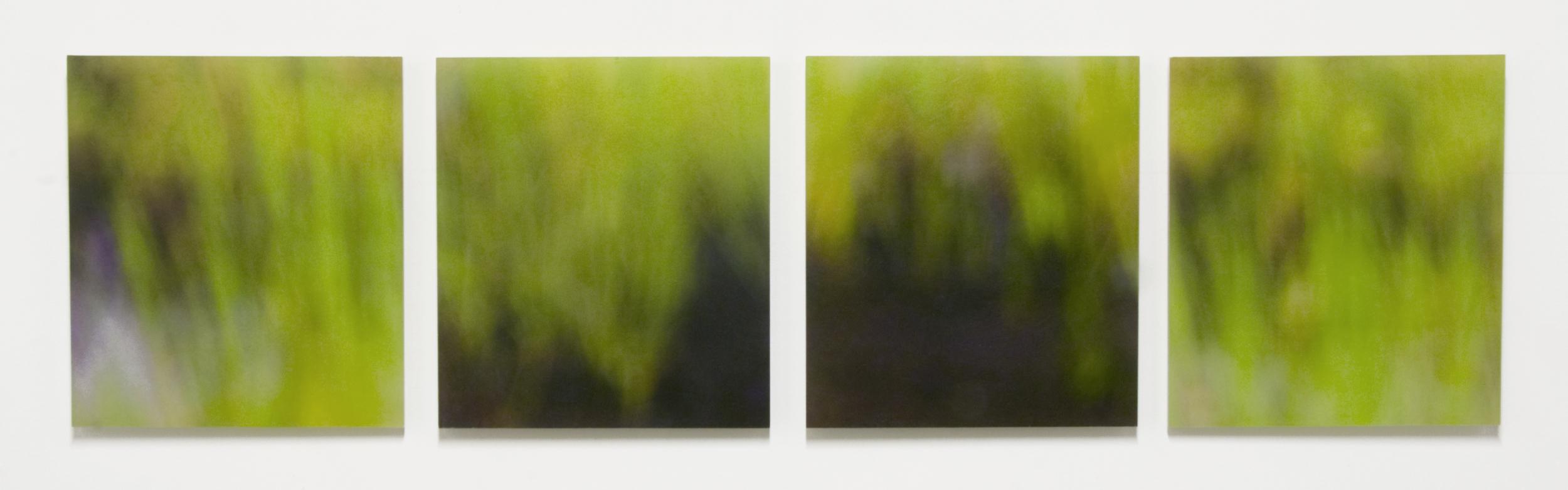 "Marsh Grass, No.3,  11"" x 43"", Pigment Ink on Japanese Kozo on Sanded Acrylic Panel"