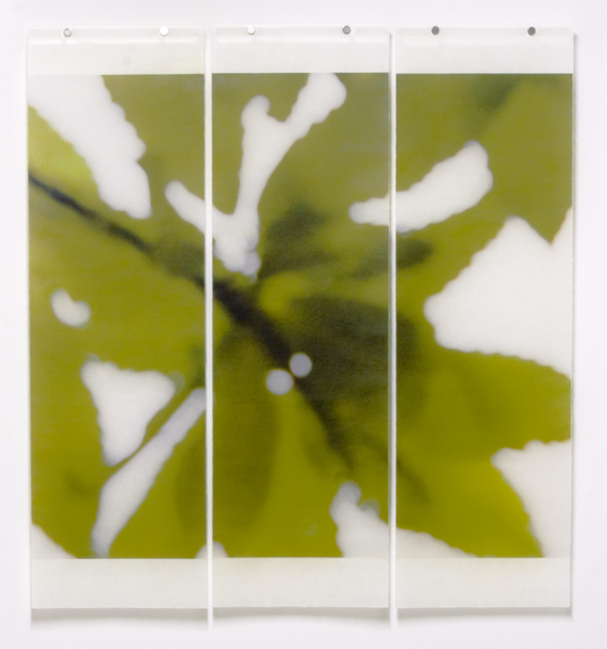 Summer Greens, No.13