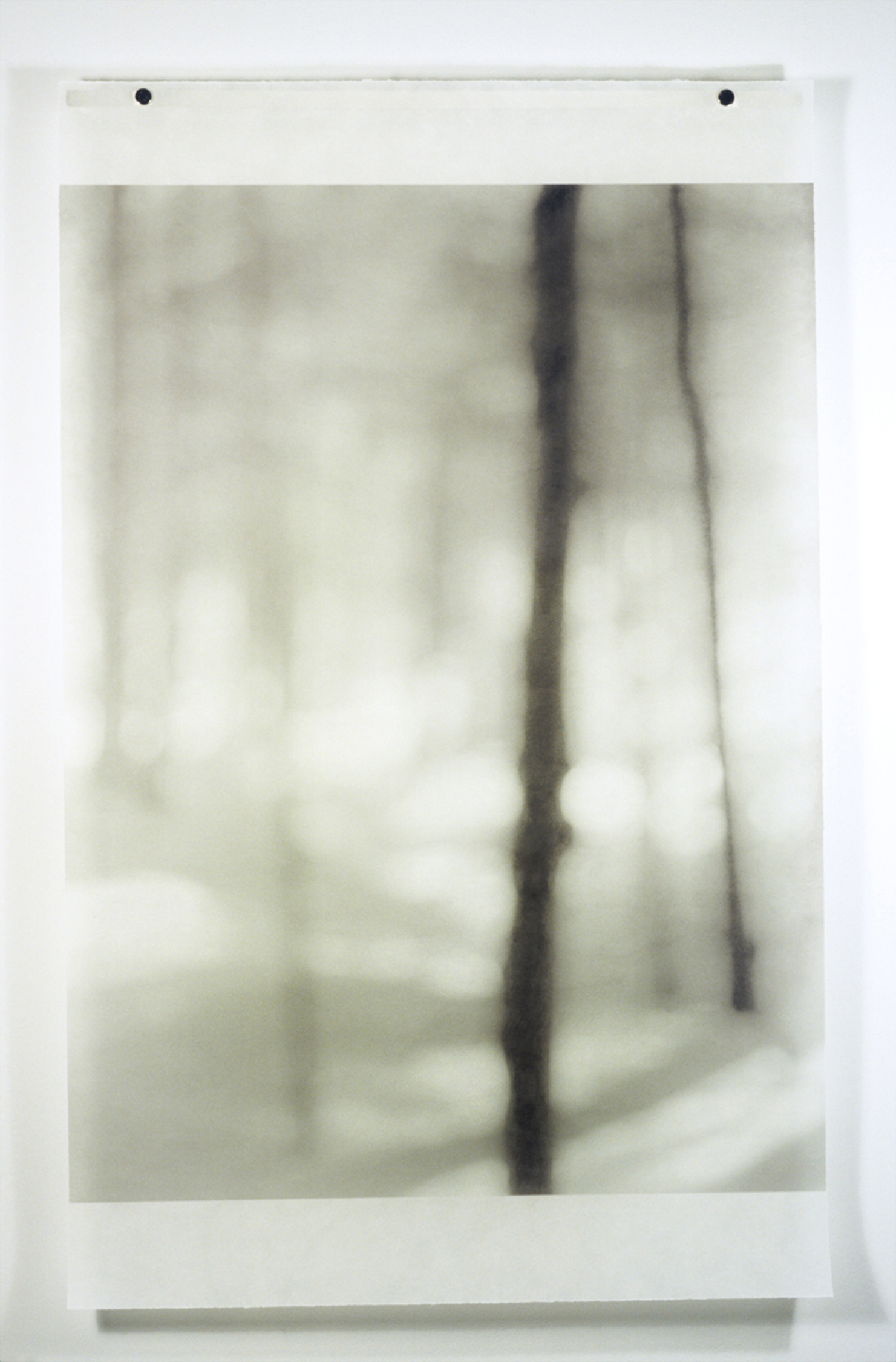 In the Snow (Lake Placid), No.3