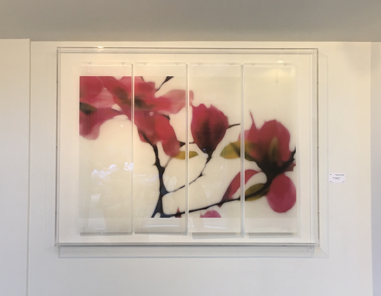 "Ruby Magnolia, No.4,  36"" x 45.5"", pigment ink on Japanese Kozo with encaustic medium"