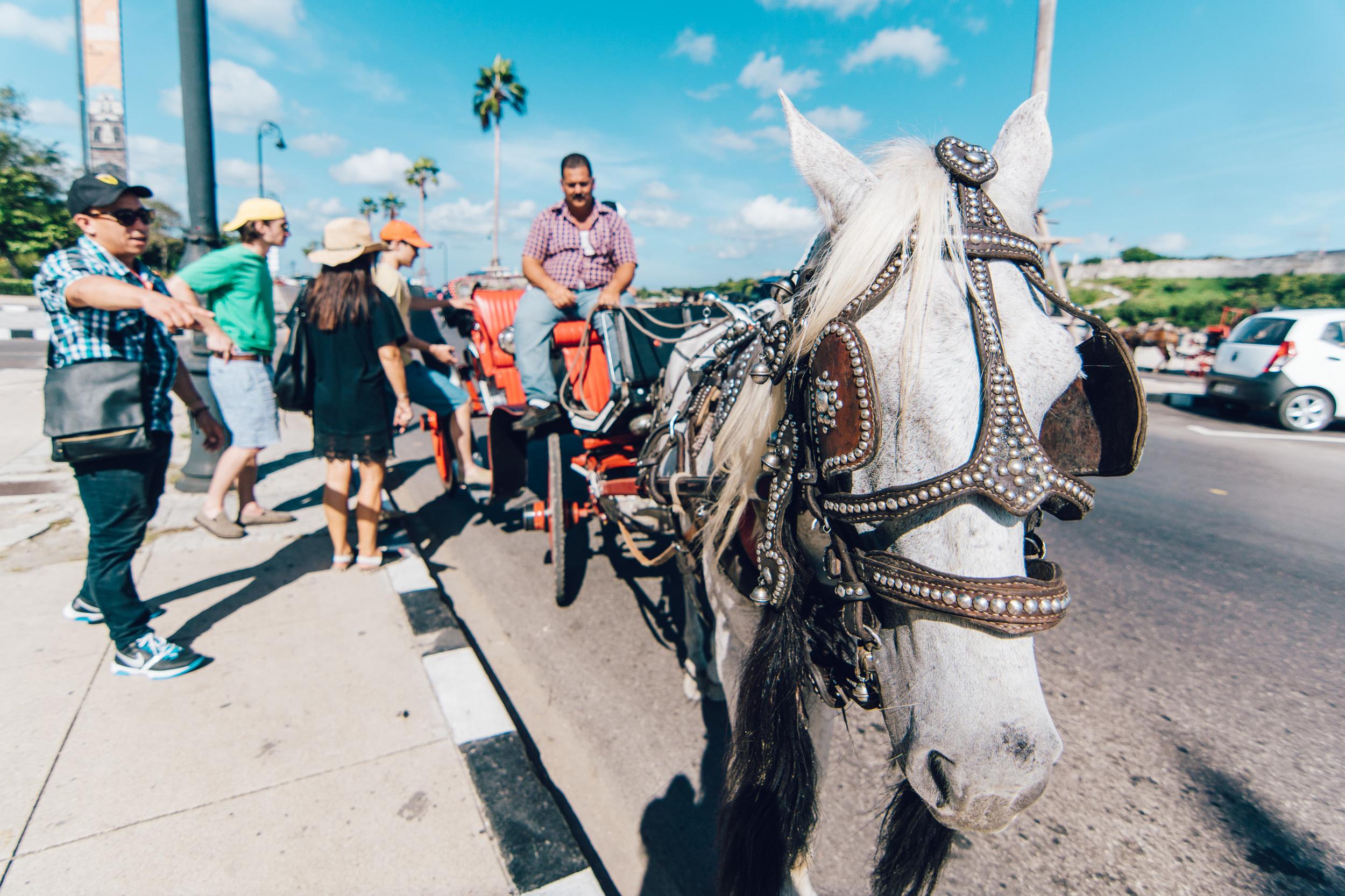 DeClaro-Photography-Cuba-02288.jpg