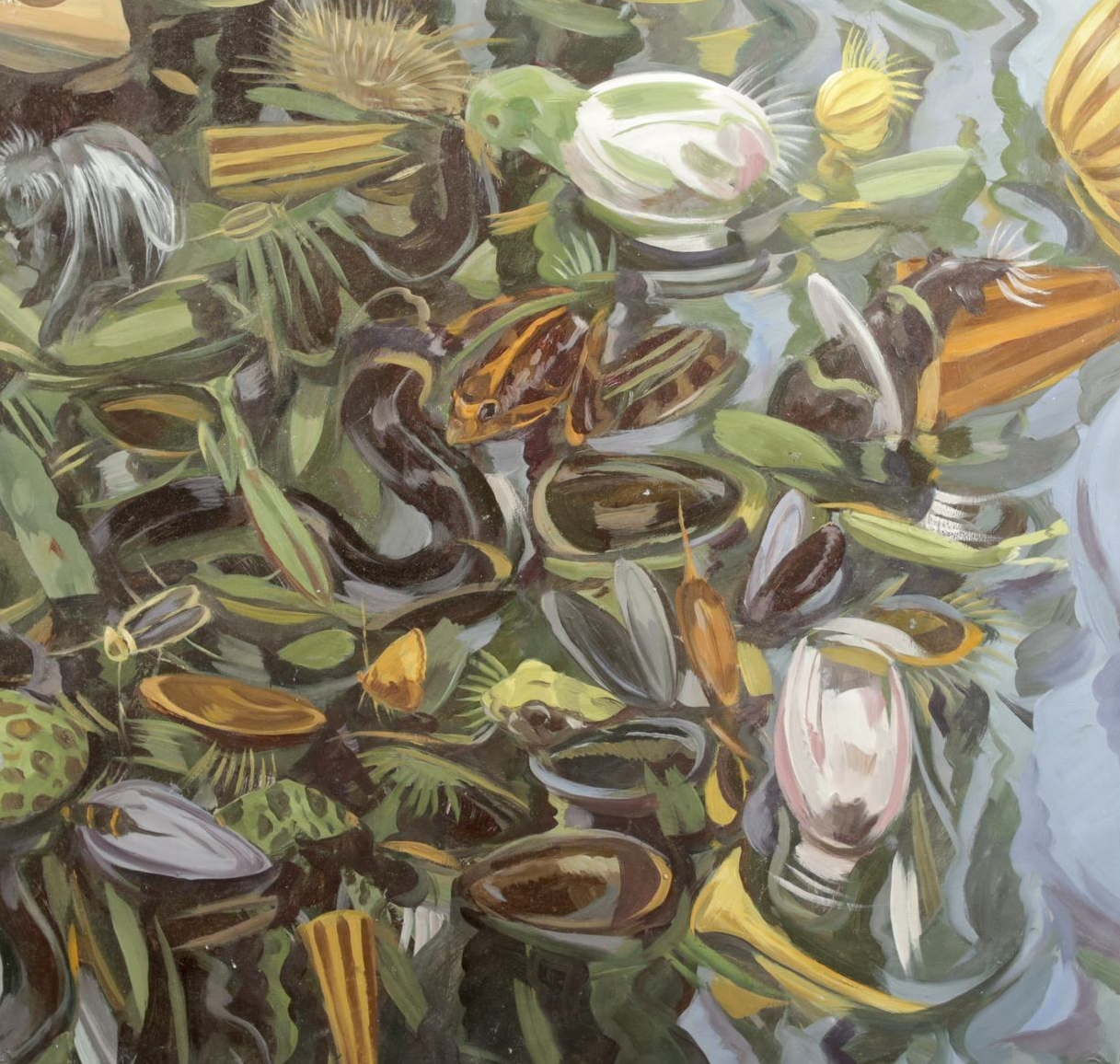 Frogs and Mussels