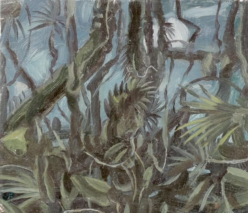 Swamp at Midnight