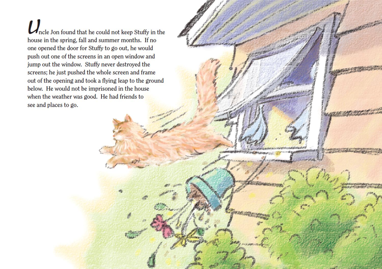 Stuffy The Cat Book1