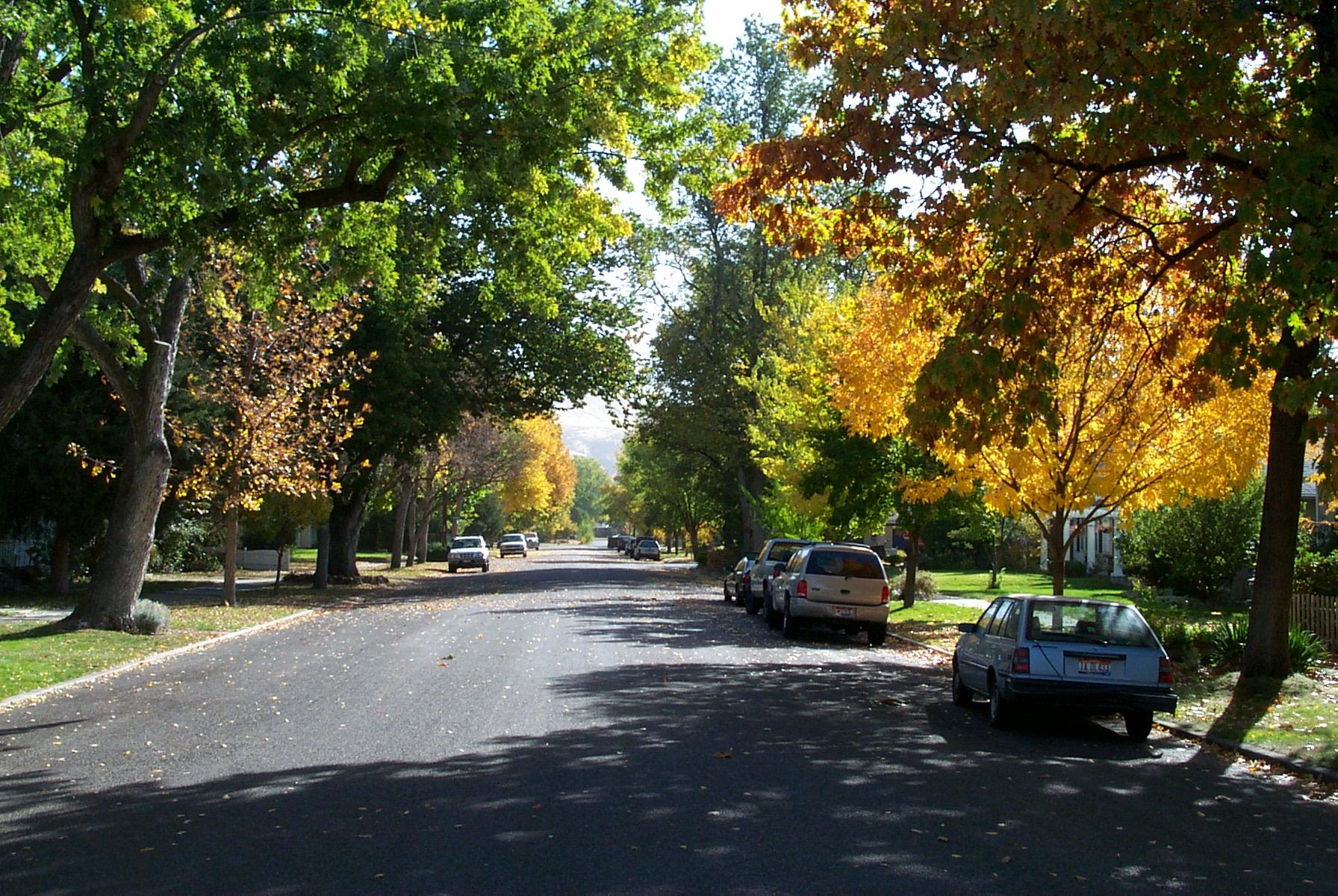 ROWSTFallStreet.jpg