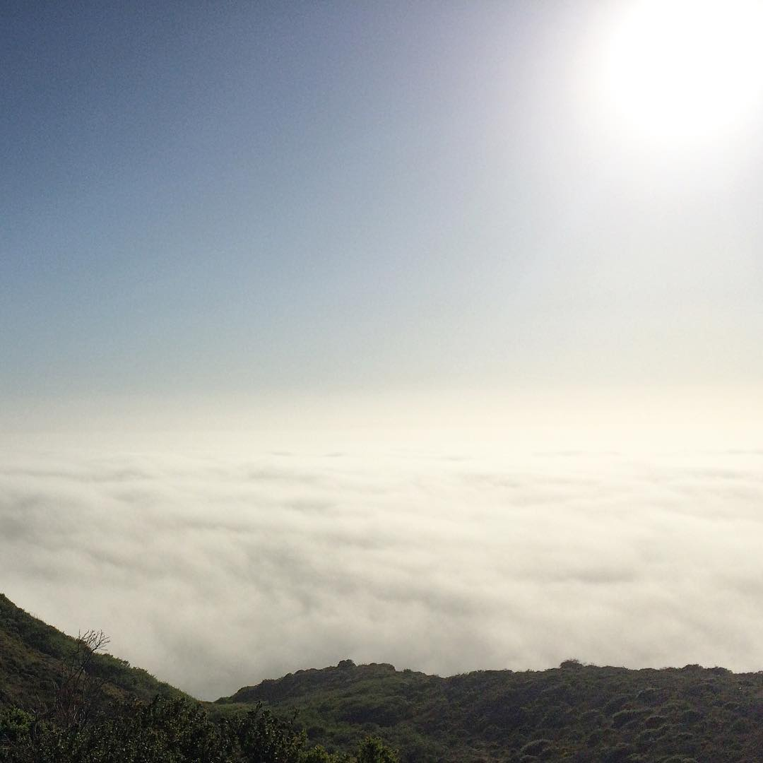 we are in the sky #California #bigsur #routeone #fog