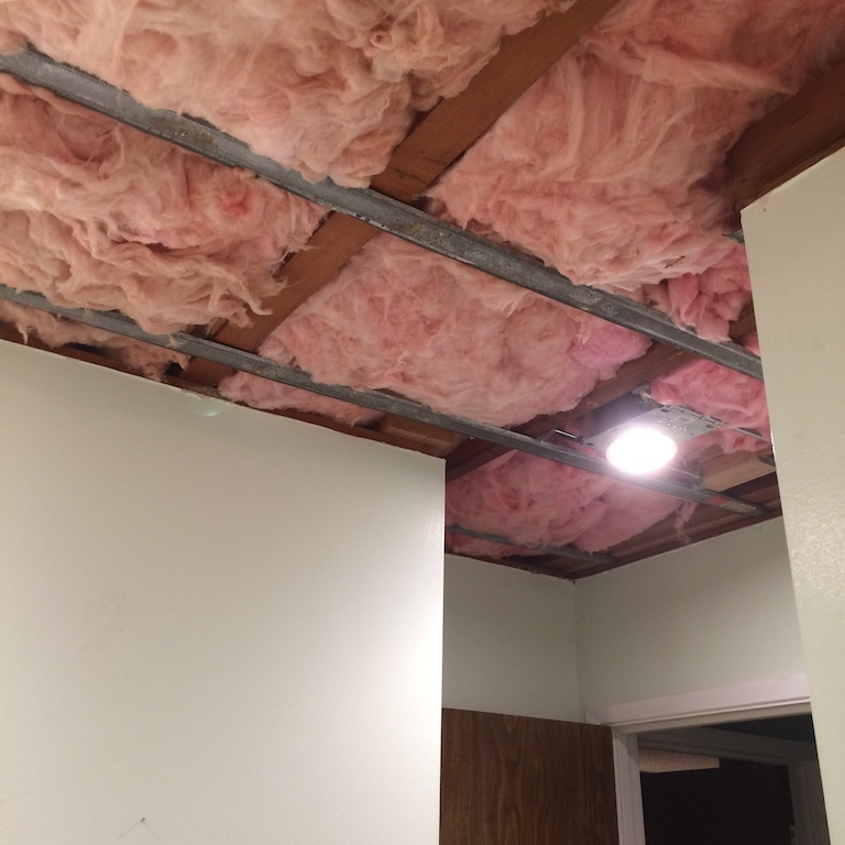 Replace Mildewed Insulation