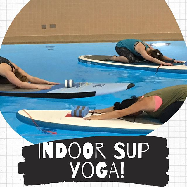 It's back this fall!!! Starting the beginning of October we will be back at the U of R pool for Indoor SUP Yoga & SUP Yoga Fitness Fusion!  SUP Yoga w/Kristal - Saturdays @ 3:10-4:05pm - October 5th, 12th, 19th & 26th  OR - November 2nd, 9th, 16th & 23rd  SUP Yoga & Fitness Fusion w/Chris - Wednesdays @ 12:05-12:55pm - October 2nd, 9th, 16th & 23rd OR - October 30th, Nov. 6th, 13th & 20th $60/person (including the board rental)  To register: click the link https://ca.apm.activecommunities.com/uregina/Home & then Search 'SUP' for the class options  #IndoorSUPYoga #SUPYoga #ReginaSk #Regina #SUPRegina #YQR #UOfR #UniversityOfRegina
