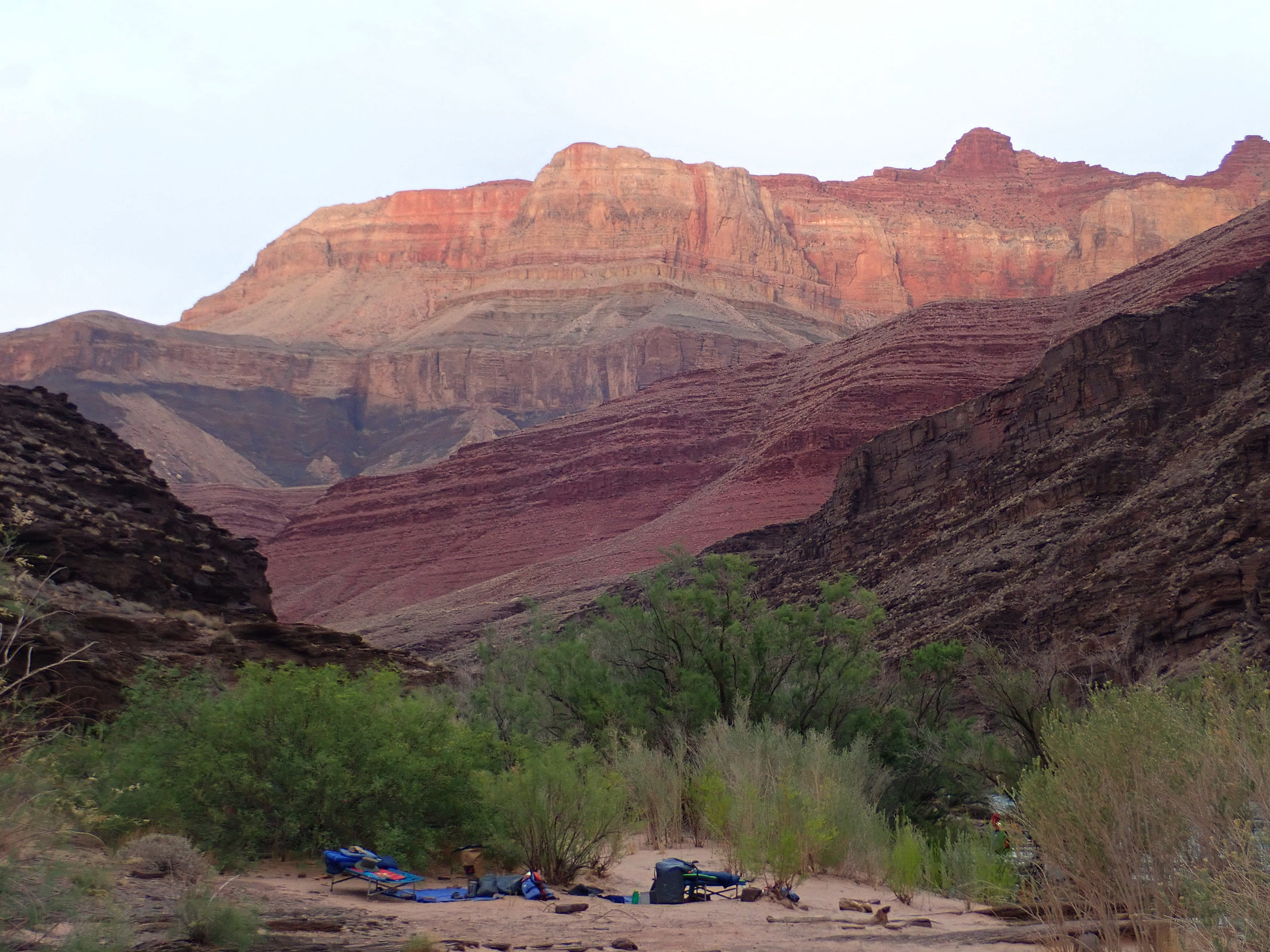 A layered view of completely different colored canyon walls!