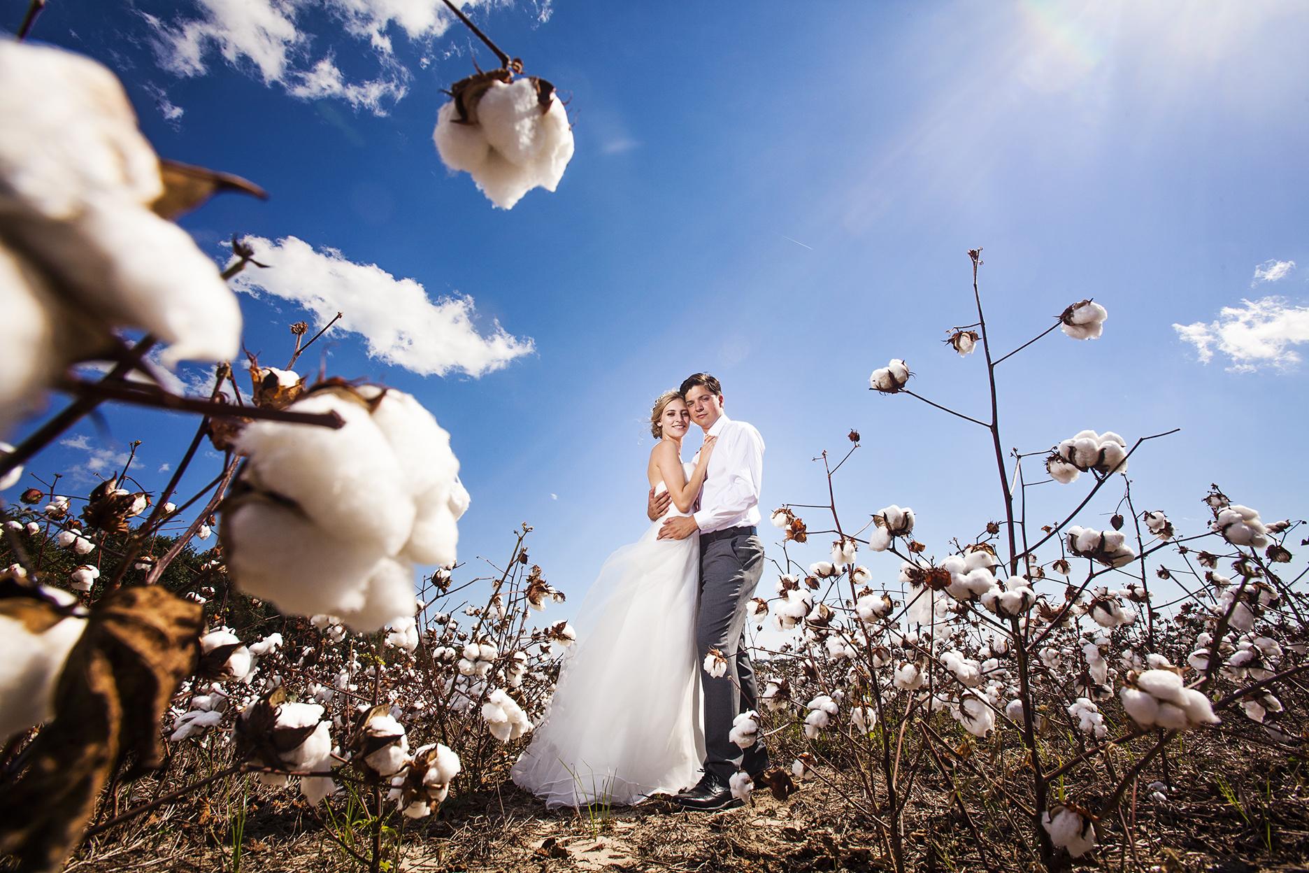 Epic Cotton Field Wedding