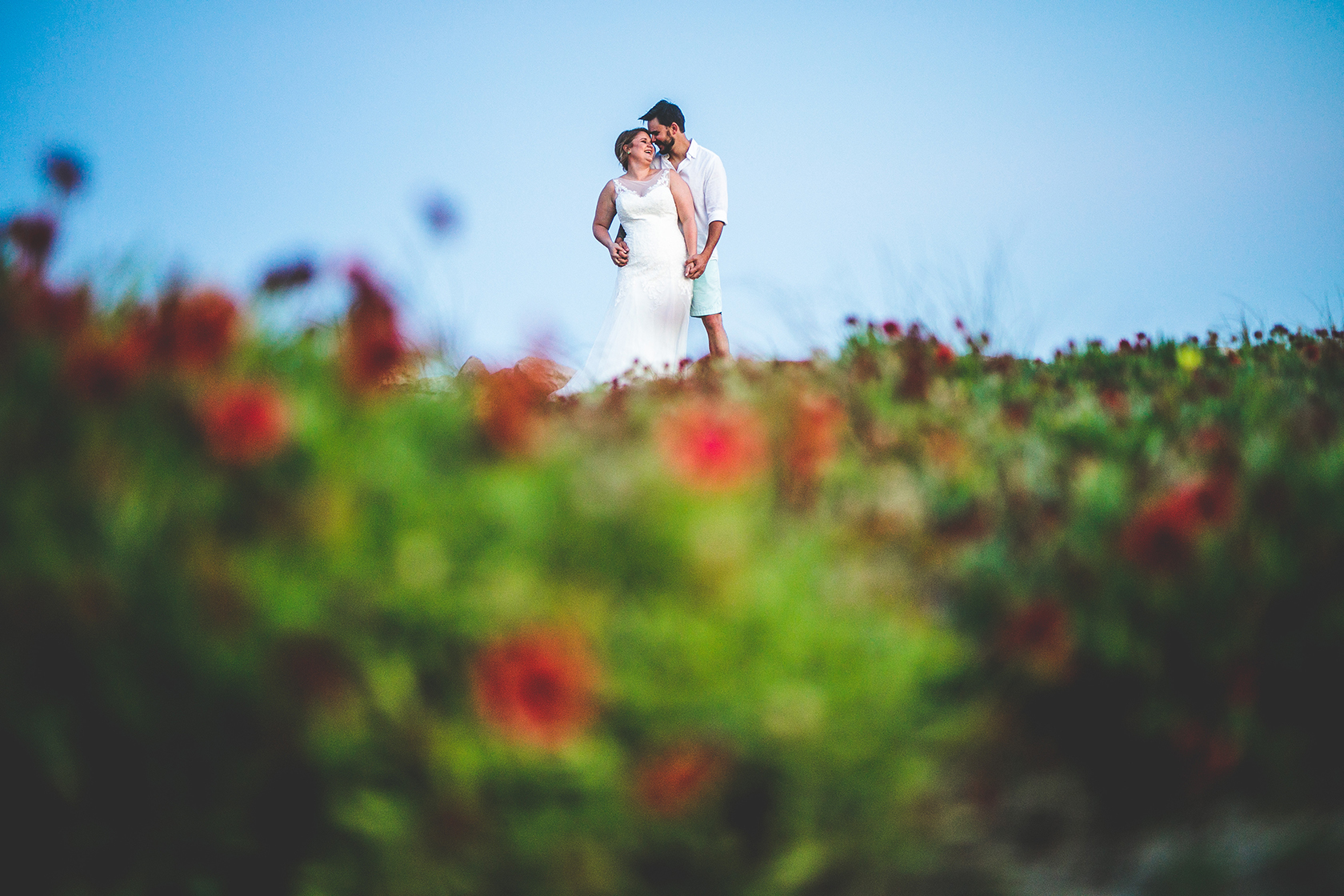 Flowers at Fort Fisher.JPG