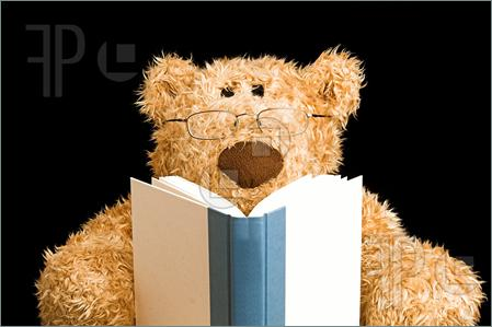 TeddyBearReading