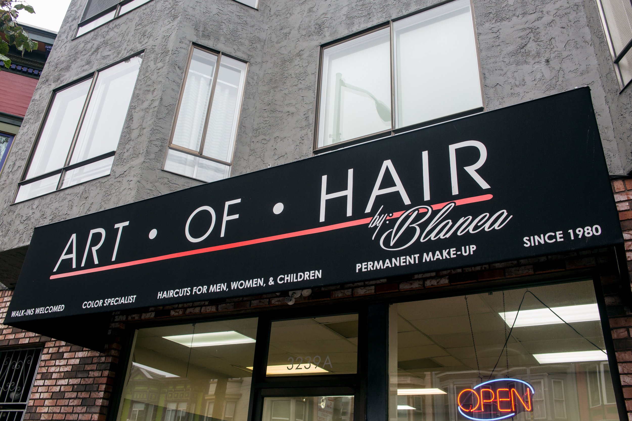 ART OF HAIR  - 3239 MISSION STREET - 415.826.7183