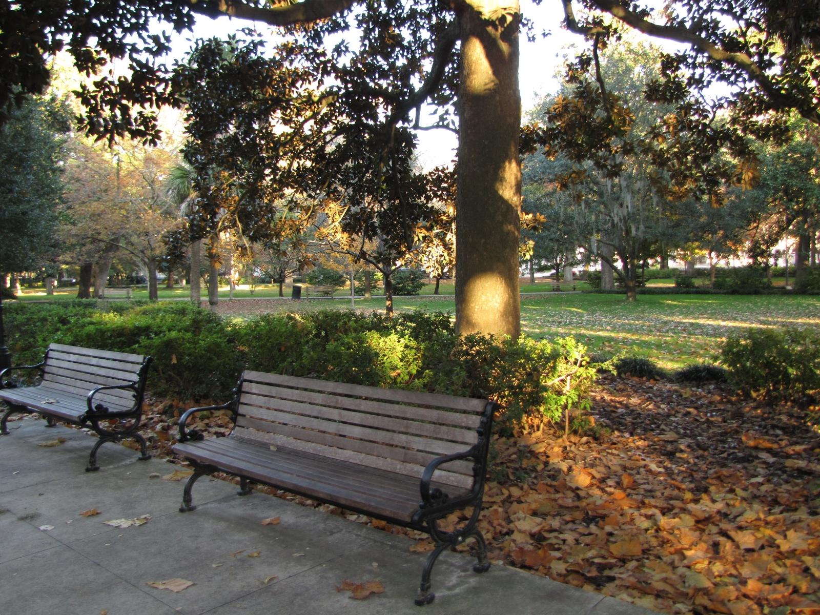 Forsyth Park bench Savannah Georgia