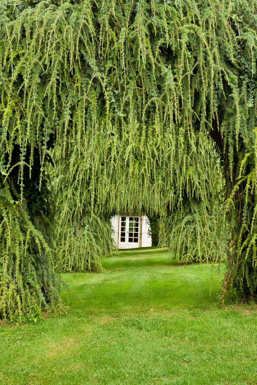 Les jardins du Manoir d'Eyrignac - Dordogne, France