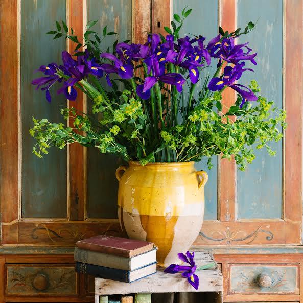 Freddie's Flowers.jpg