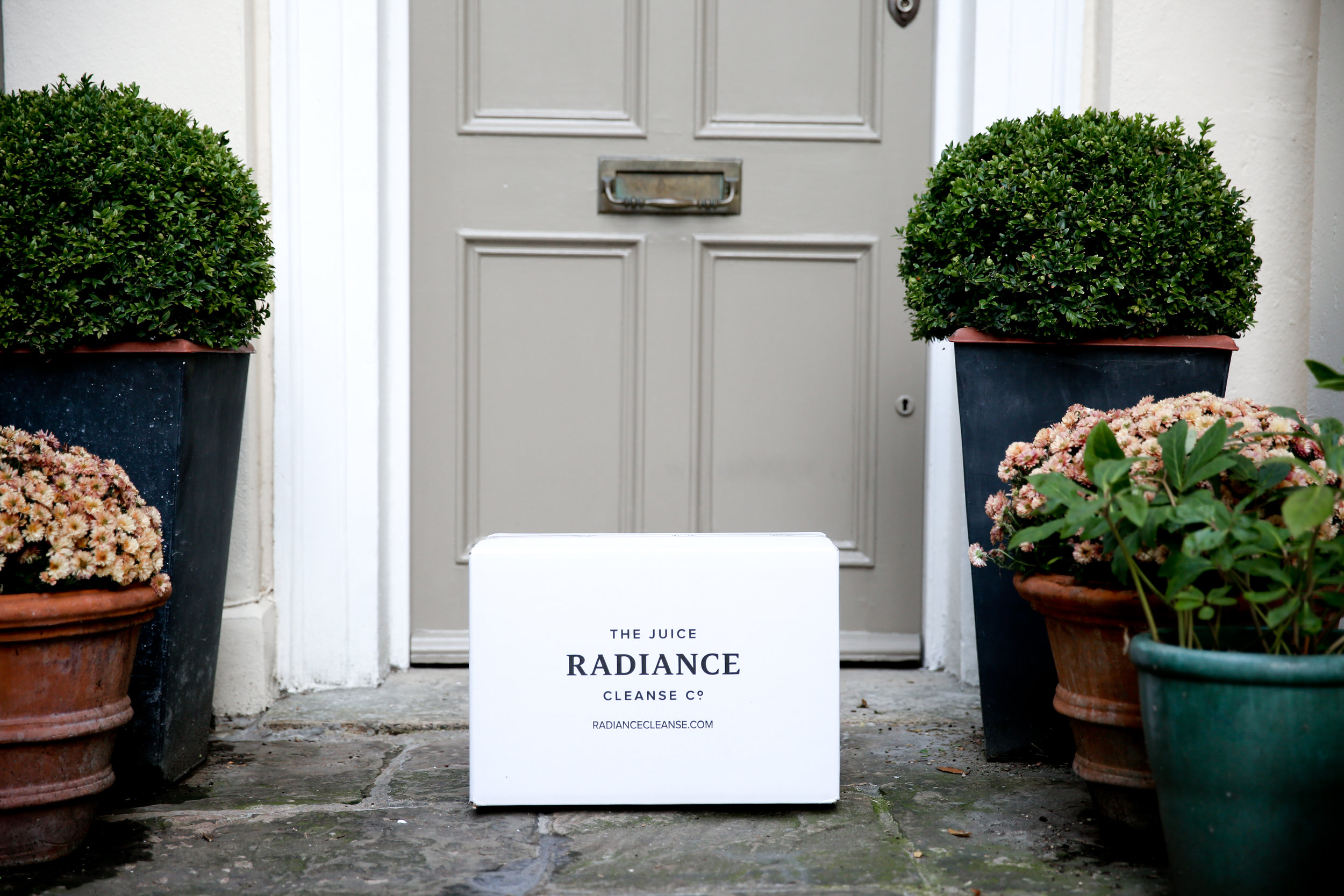 Radiance door.jpg