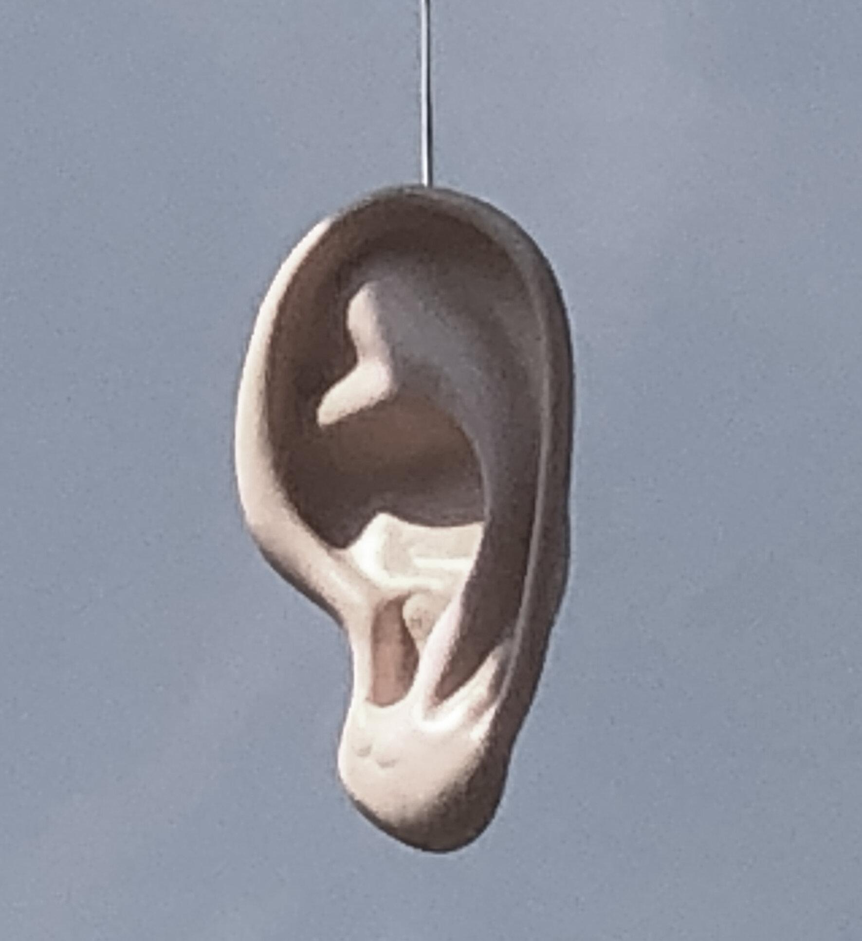 hanging-ear.jpg