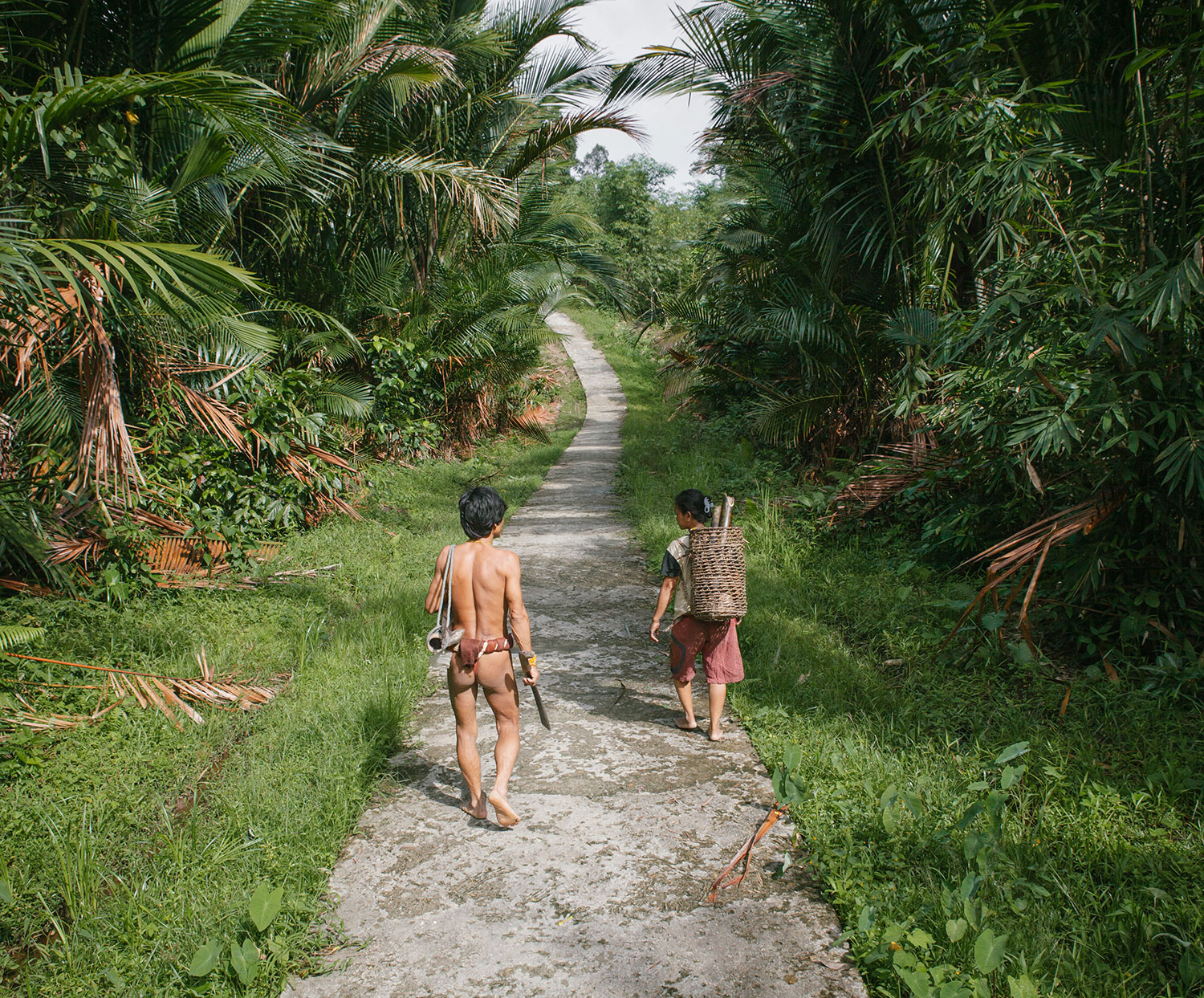 New concrete pathway connects villages at the Siberut interior.