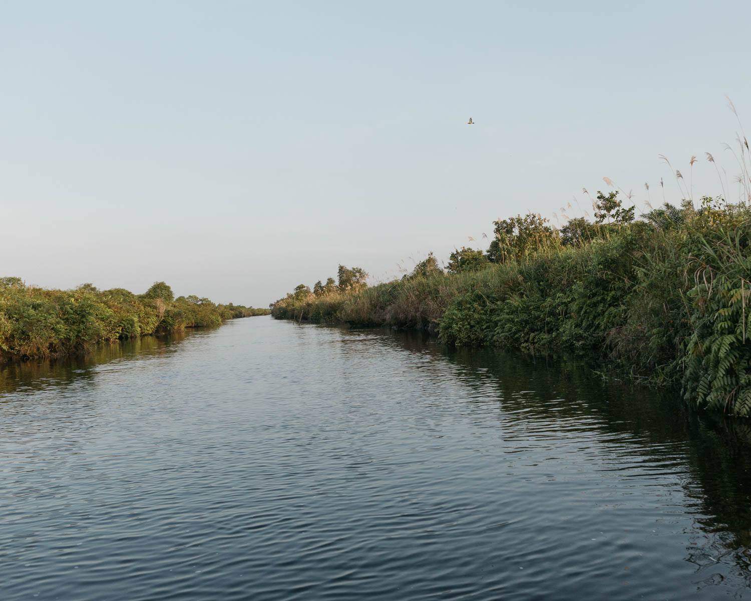 The canal that connects Mentaya and Katingan River. The land of PT Rimba Makmur Utama located between these two rivers.