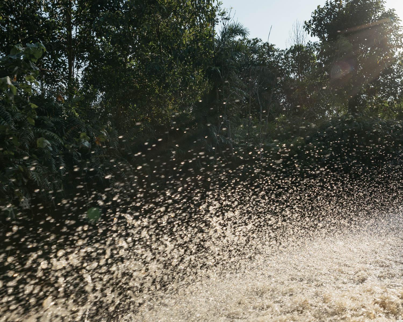 Burst of water from Katingan river as a water taxi passes.