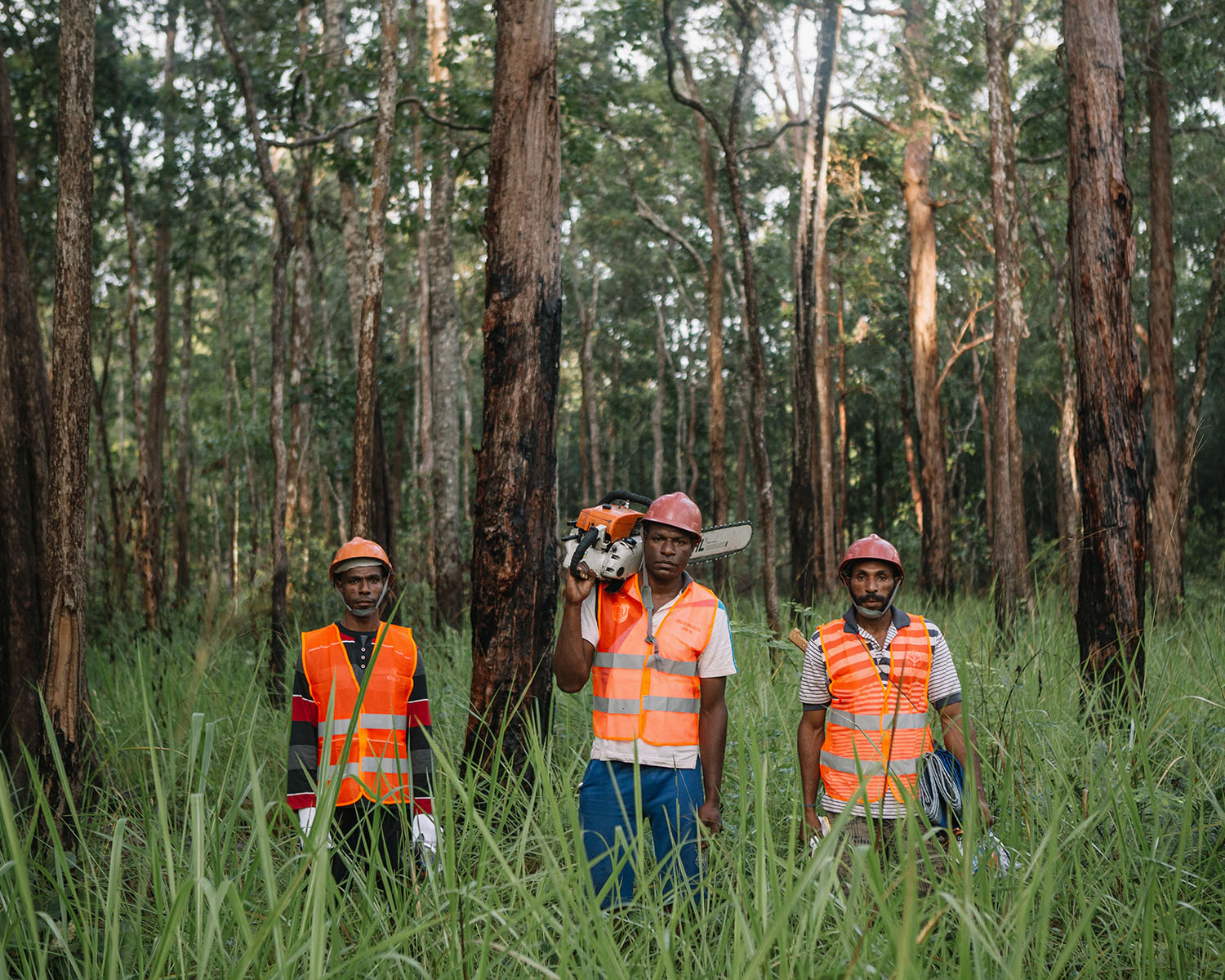 WWF Sustainable Community Forestry in Papua, Indonesia