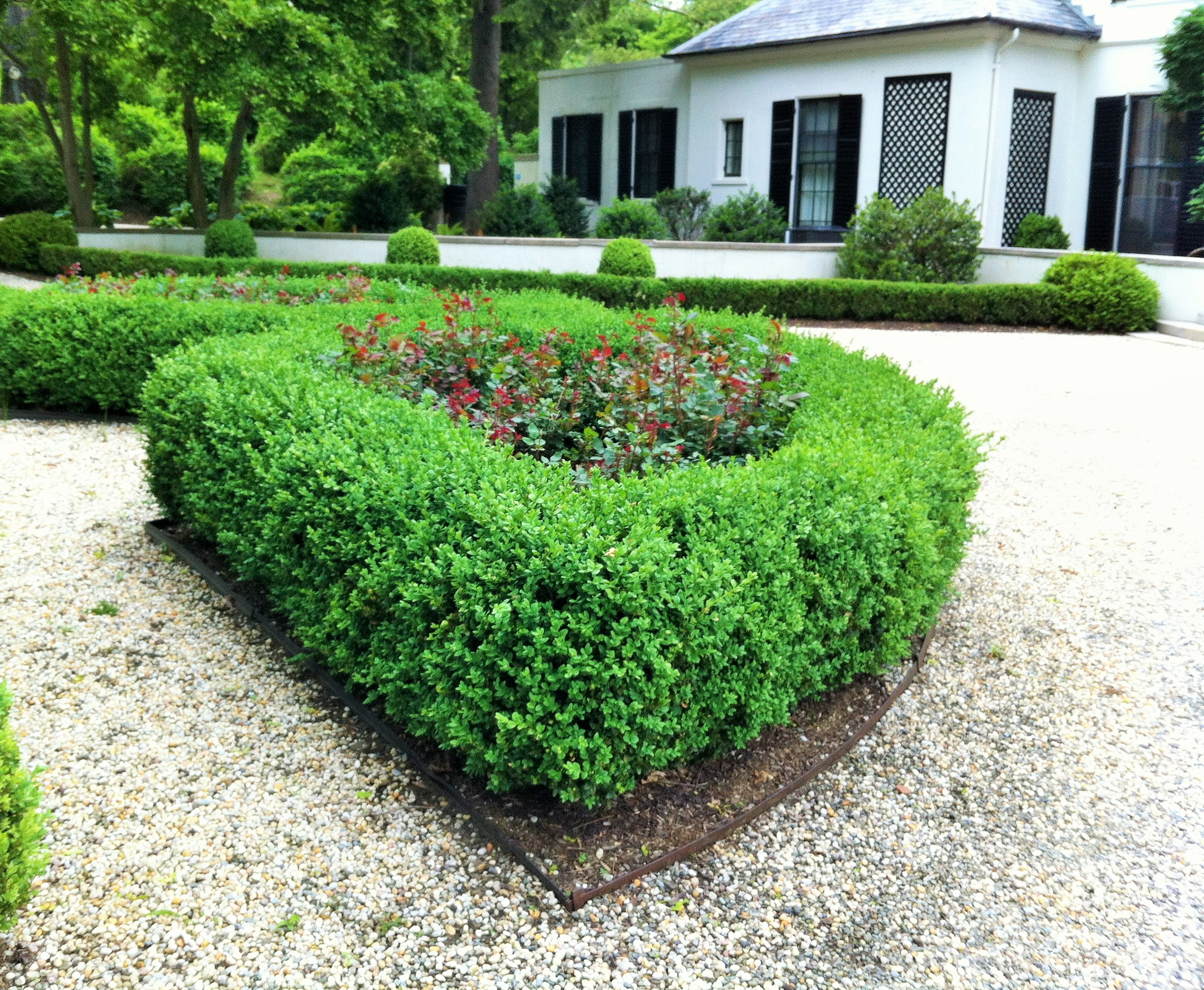 PRUNING AND SHAPING SURFACES