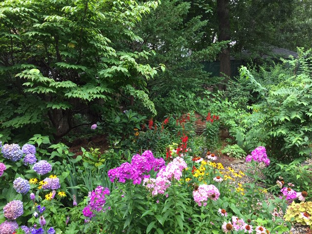 Late Summer 2018 - a pretty colorful garden to enjoy!