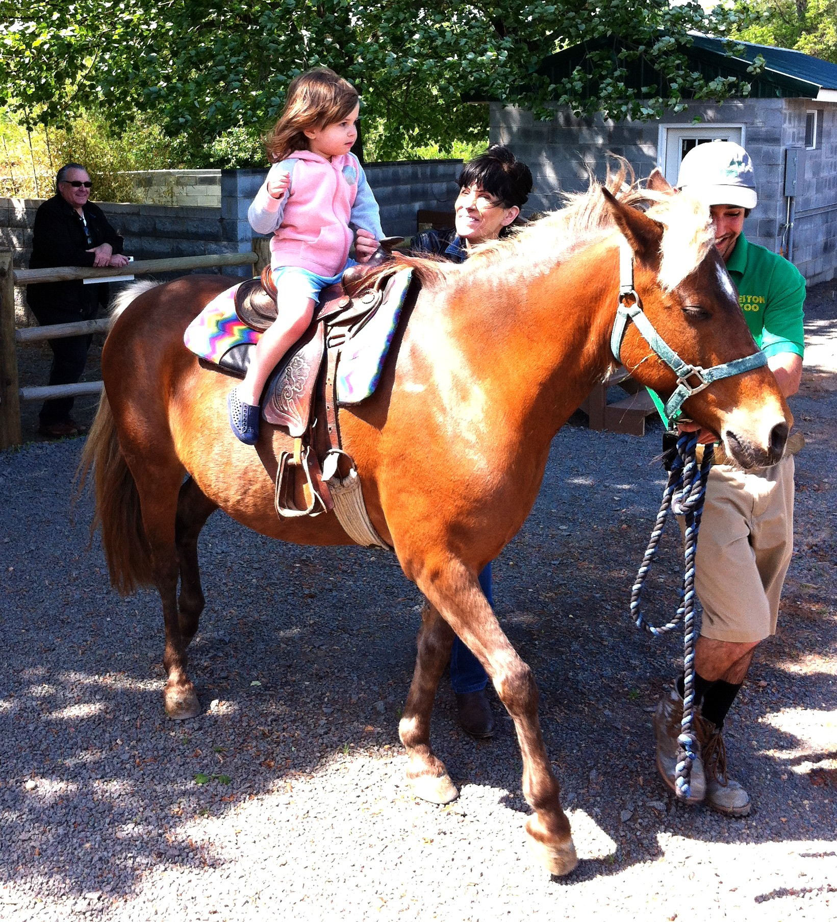 fam matter pony EDITED.jpg