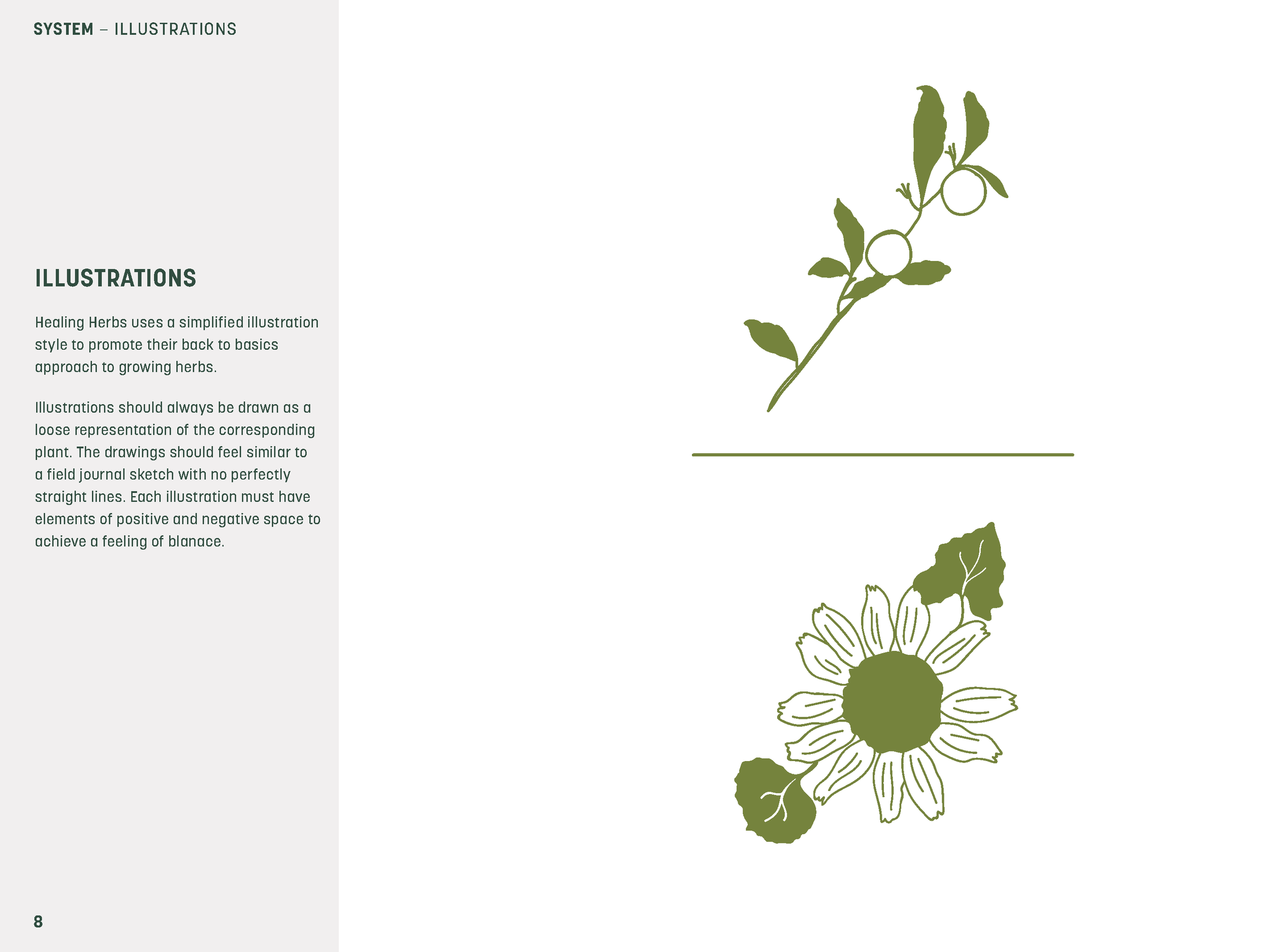 Healing_Herbs_Brand_Guidelines_2015_Page_08.png