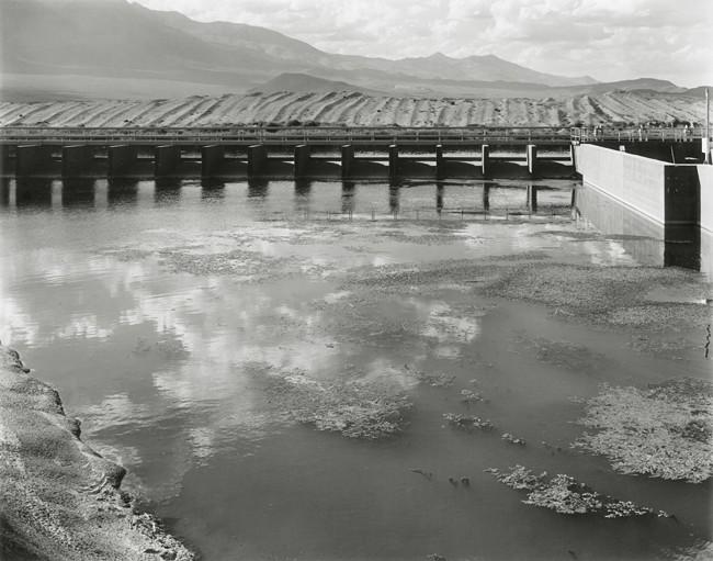 09-Richard Boutwell_Lower Owens River Project_07.jpeg