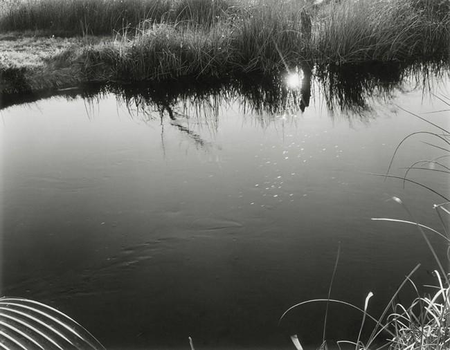 07-Richard Boutwell_Lower Owens River Project_05.jpeg
