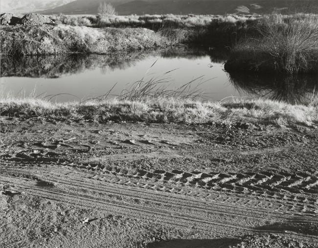 06-Richard Boutwell_Lower Owens River Project_04.jpeg