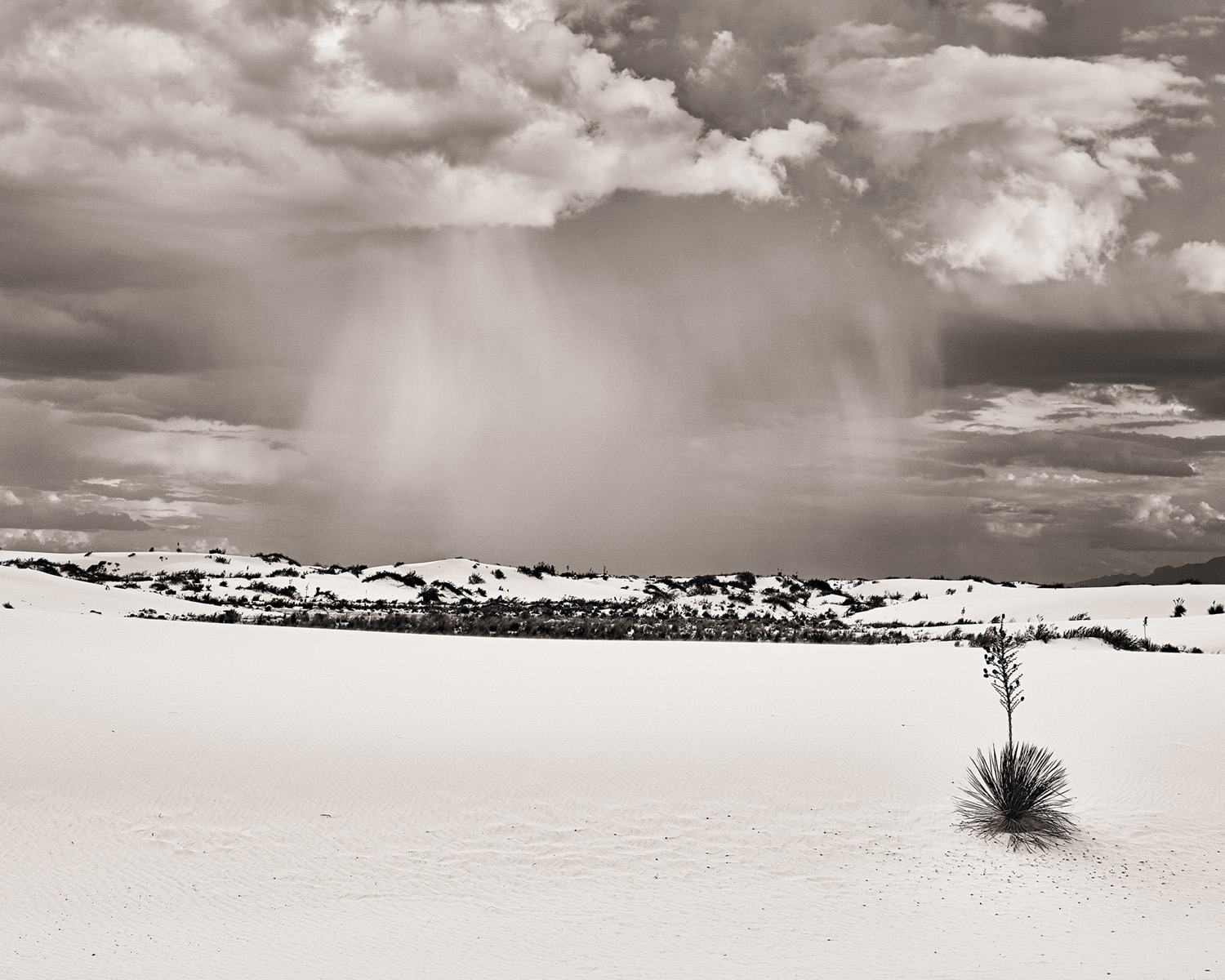 Richard Boutwell-White-Sands-C1 BW Conversion-Final with ICC C-Se color.jpg