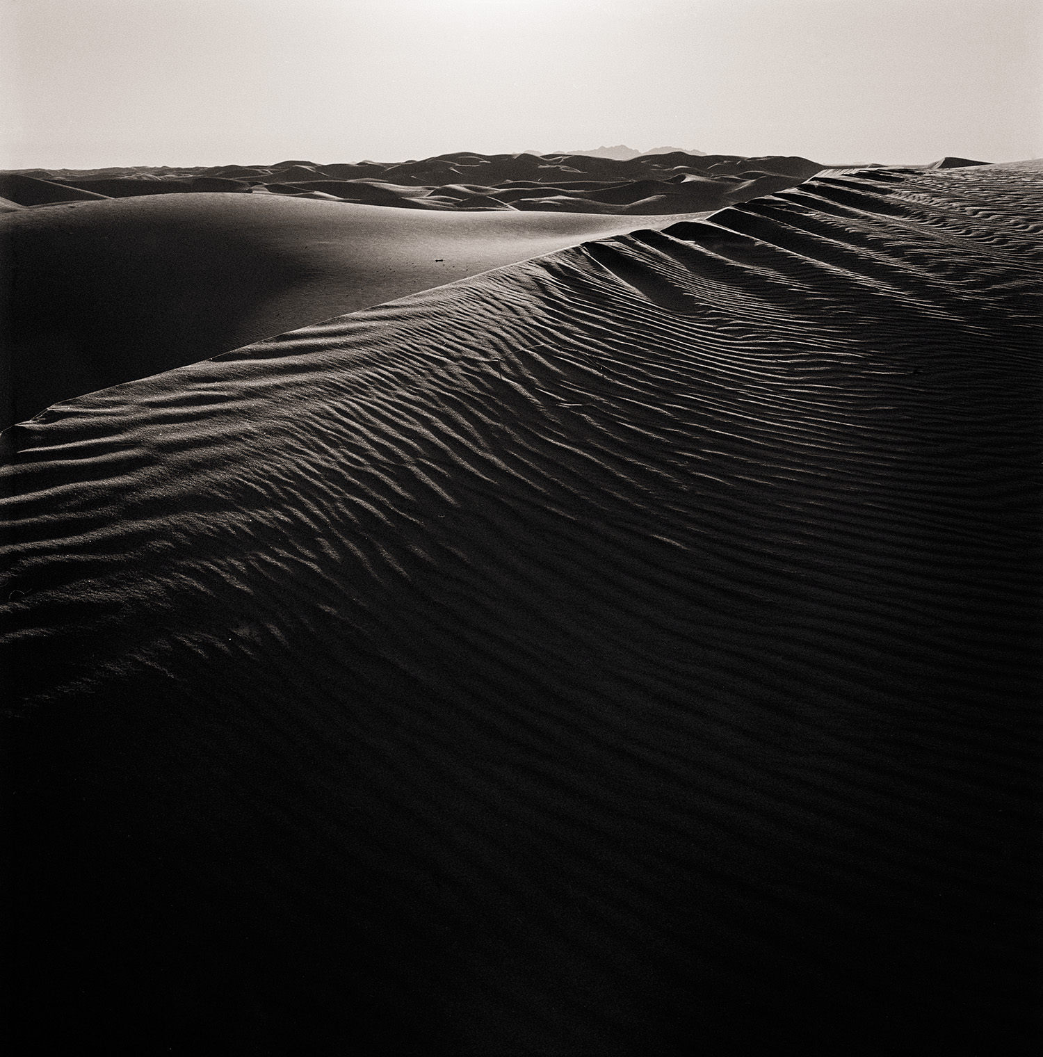 Richard Boutwell-Algodones-Dunes_2001-8-F-with C-Se ICC Color .jpg