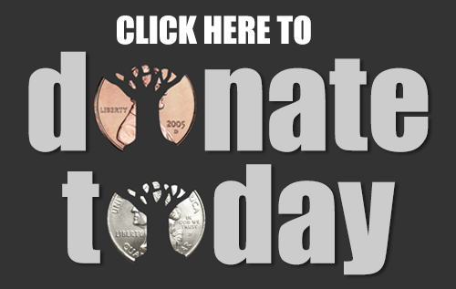 BDT-Donate+Today.png